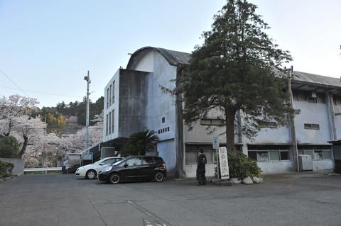 御殿場線 桜の山北 春爛漫