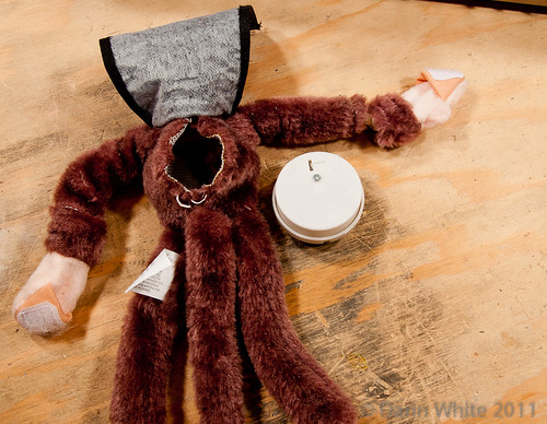 Project Loud Monkey 049