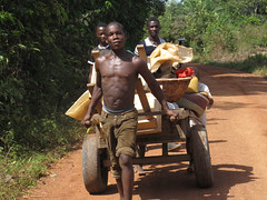 Families fleeing the Ivory Coast conflict