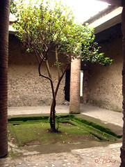 Villa dei Misteri, Pompei (Nicky Pastore) Tags: pompei scaviarcheologici girovagando