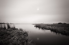 Stranded (Martijn N. van Dam) Tags: netherlands reflections wreck uitdam