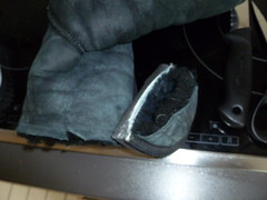 Der Winter ist vorbei - da braucht man weder UGGs noch Grnkohl :-) (janinemayer458) Tags: old trash shoes kill boots cut flats bye stinky uggs ballerinas