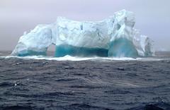 Antarctic Art Forms (ExpeditionTrips) Tags: antarctica seaspirit destinationantarcticpeninsula quarkantarcticacruisethepeninsula antarcticacruises