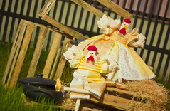 Em breve novo atelier... (Rejane Rosa) Tags: galinha artesanato patchwork bichos