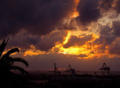 Streak (Padmacara) Tags: clouds sunsets cranes palmtree fremantle g11