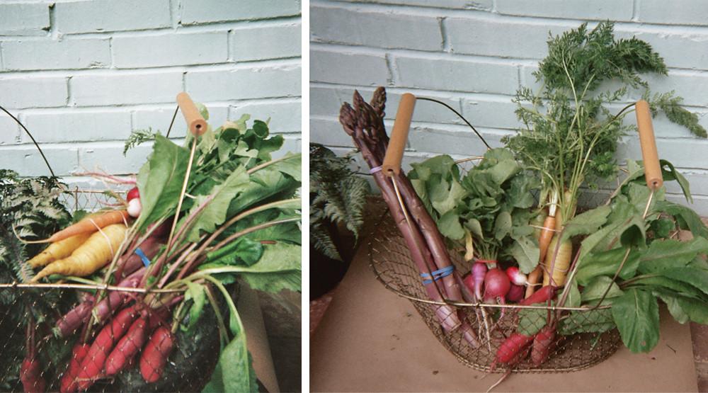 veggies II