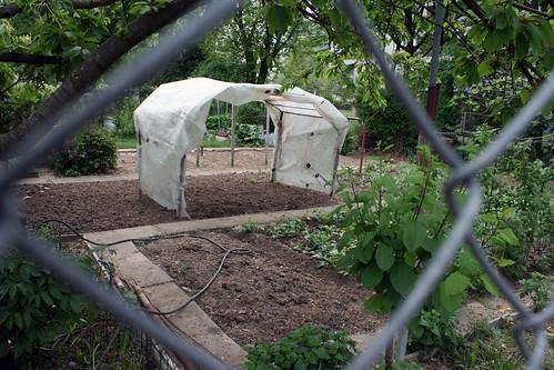 basel garden 006