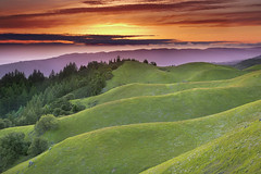 Faultlines - Mt. Tamalpais, Marin County, California (PatrickSmithPhotography) Tags: ocean sanfrancisco california sunset sky usa cloud beach grass landscape bay earthquake bravo unitedstates pacific marin bolinas ridge fault redwood tamalpais laurel stinson millvalley douglasfir photocontesttnc11
