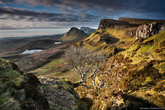 The old tree of Quiraing (Daniel Paravisini) Tags: light scotland oldtree canoneos5d thequiraing leefilters heliopanpolarizer danielparavisini