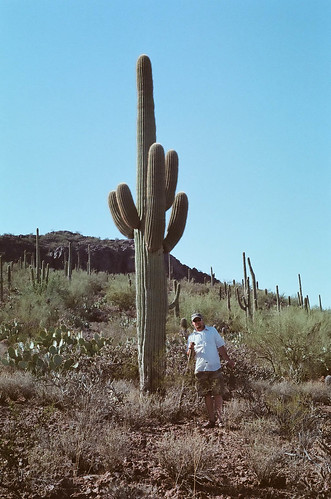 that's one tall cactus