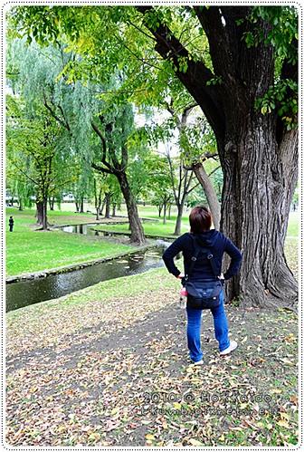 北海道大學 (4).JPG