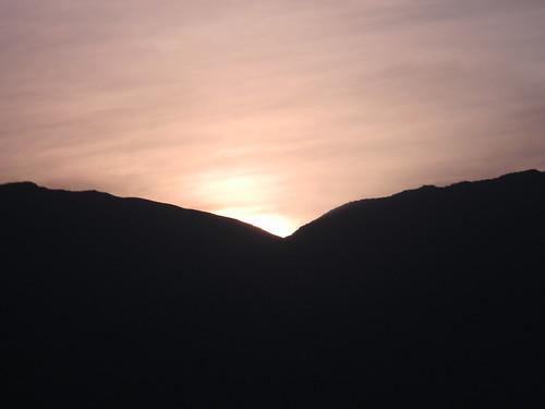 Gaviota de sol by Carlos Navarro C.