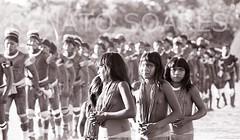 O Ultimo Kuarup (www.renatosoares.com.br) Tags: brasil xingu matogrosso aldeia luta kamayur tradies etnias kuarup yawalapiti kuikuro hukahuka kalapalo