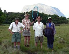 Muretha plateau - Mt. Namuli, Mozambique