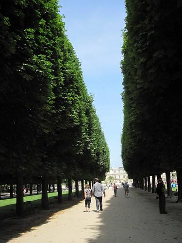 Jardin de Luxembourg: Trees