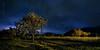 Magic field (Dominic Cristofor) Tags: longexposure tree landscape nikon nightscape noflash tokina nightscene ultrawide d300 1116mmf28