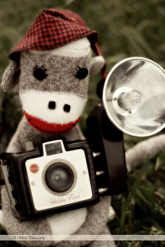 Zander Photographer