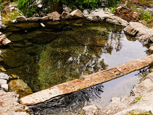 Pool at Weir Creek Hot Springs, Idaho