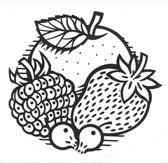 "Artwork for Soft Fruit Logo • <a style=""font-size:0.8em;"" href=""http://www.flickr.com/photos/64357681@N04/5867117516/"" target=""_blank"">View on Flickr</a>"
