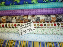 13 - Kitty Fabric