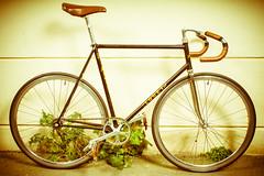 DSC09241 (GOSH !) Tags: roy bike la cycle ag deux banane générale bicyclette maxime rennes petite vélo association urbain sérigraphie assemblée roues goldsprint réparation entretien biclou 12042014 autoréparation