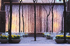 Midtown Oasis (Slow Little Photo) Tags: park nyc newyorkcity flowers trees ny newyork water publicspace america easter landscape concrete waterfall spring vines tulips planters weekend manhattan sunday places paisaje cobblestones midtown cobblestone april waterfeature lugar yellowflowers espacio nuevayork landscapearchitecture furnituredesign 2014 eastersunday moderndesign landscapedesign outdoorfurniture publicplace