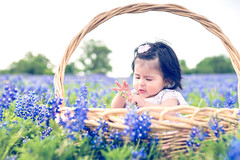 Bluebonnets with Eva Love 04-2014 | 009 (@i-seen-it_RubenS | R.Serrano Photography) Tags: baby photography photo shoot texas unitedstates hempstead bluebonnets | rserrano pagesrserranophotography140429305980896iseenit iseenitproductions