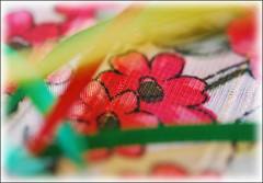Flowers and Ribbons (sundero) Tags: flowers red color green art texture colors scarf ribbons dof bokeh painted ribbon paintedflowers
