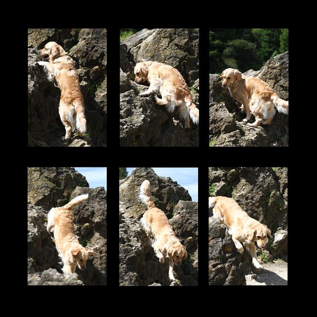 ViVi Rock Climbing