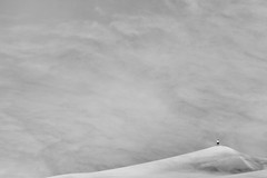 (summerspot) Tags: person colorado space minimalism distance sanddunes greatsanddunesnationalpark earthandsky highwind blowingsandanddust