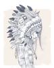 Gairebé invencibles (carlossadness) Tags: casi indio fronteriza invencibles shinoflow