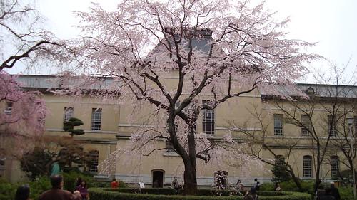 2011/04 京都府庁旧本館 #03