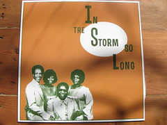 V/A - In The Storm So Long LP - Mississippi Records
