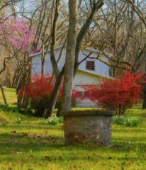 Quaint Cottage (Pfish44) Tags: cottage quaint earlyspring bloomingtrees lakeatlanta