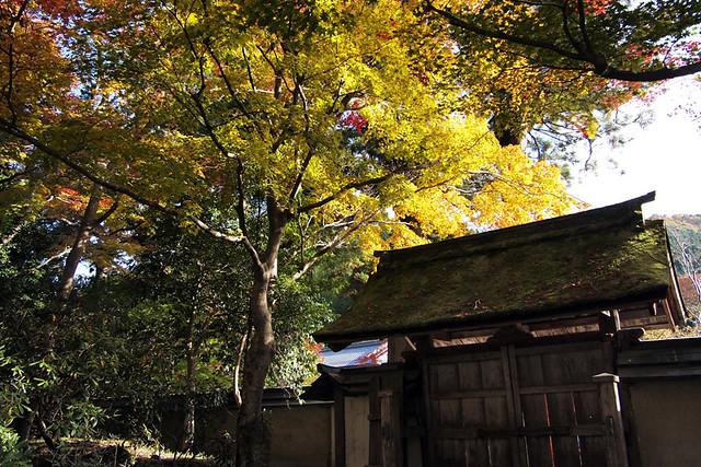 20101119_141036_室生寺