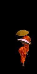 Monks (shashin62) Tags: thailand bangkok mygearandme
