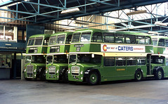 Eastern national Lodekka's in Southend Bus station 1971. (David Christie 14) Tags: buses southend lodekka