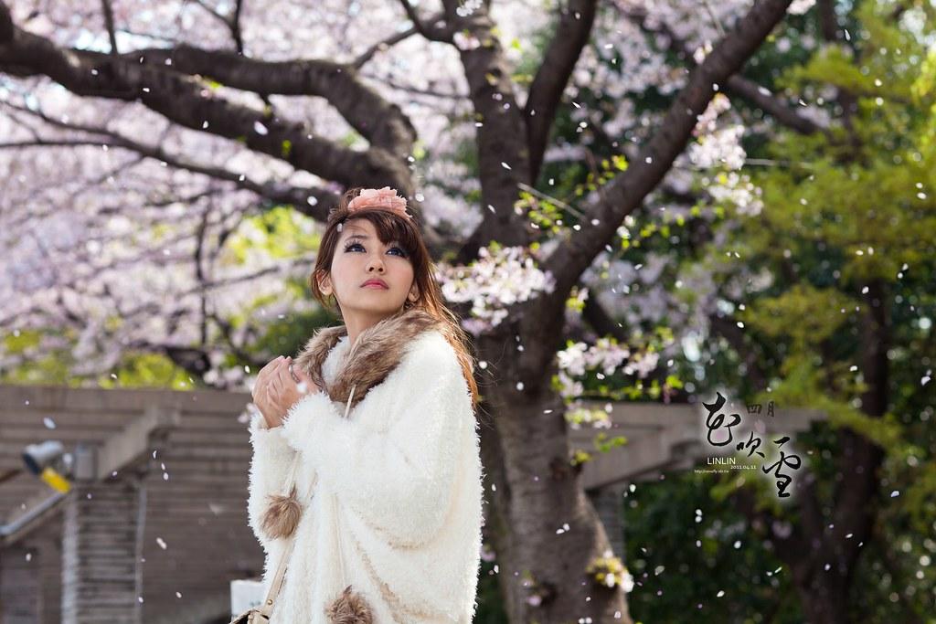 [LINLIN]四月.花吹雪
