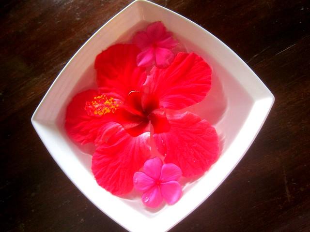 Kapuluan Hibiscus