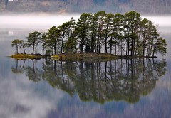 Island in lake Hornindalsvatnet (ystenes) Tags: lake norway fog pine reflections island norge 1001nights pinetrees pineforest innsj magiccity y nordfjord hornindal furuskog hornindalsvatnet mygearandme mygearandmepremium mygearandmebronze mygearandmesilver mygearandmegold mygearandmeplatinum mygearandmediamond flickrstruereflection1 flickrstruereflection2 flickrstruereflection3 flickrstruereflection4