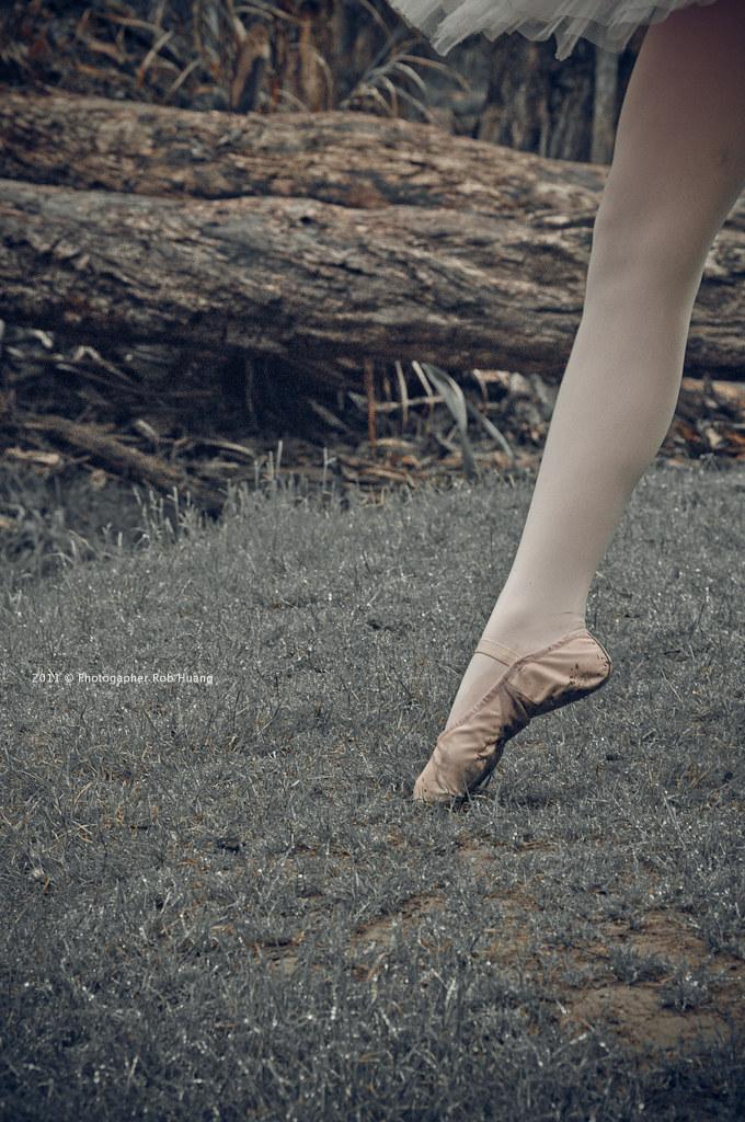 MoMo - 森の舞姬