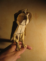 owl (-sebl-) Tags: origami owl chouette sebl