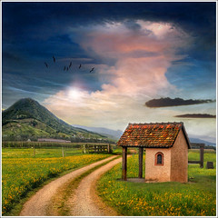The shelter (Jean-Michel Priaux) Tags: flowers sky house france home field grass fairytale clouds photoshop painting way spring drawing dessin peinture dandelion alsace shelter paysage printemps hdr chemin montain vosges littlehouse mattepainting pr abri champtre landsace vanagram mygearandme