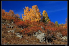 nEO_IMG_IMG_1803 (c0466art) Tags: old trip travel blue autumn trees light sky people mountain beautiful sunshine turn canon landscape living photo amazing scenery colorful village bright air chinese fresh clean 5d  2010 c0466art
