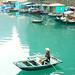Floating fishing village, Halong Bay