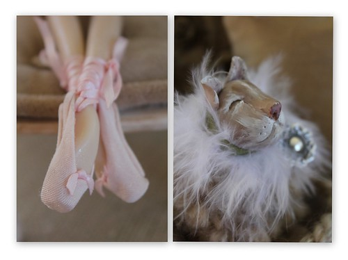 Pointes & kitty 4 blog