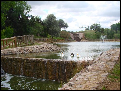 Parque del Lago (3) , Getafe
