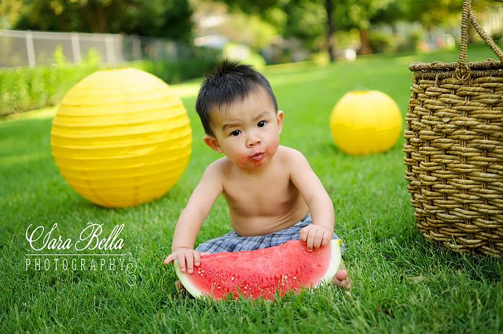 Taylan226-1 copyweb