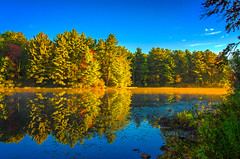 Sun-Rising-on-The-Cove (desouto) Tags: nature hdr pond lake water plants trees berries green sunrise glow autumn color leaves