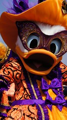 Daisy (haphopper) Tags: autumn halloween daisy themepark tokyodisneysea 2010 tds tdr masqueradedance big8 lidoisle medharbor